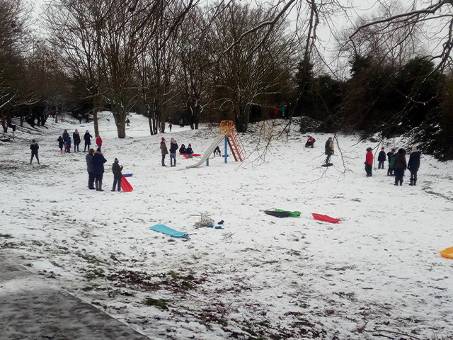 sheerstock park in the snow