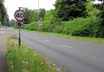 Speed Limit Consultation