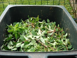Green Waste and Household Recycling Centre Update